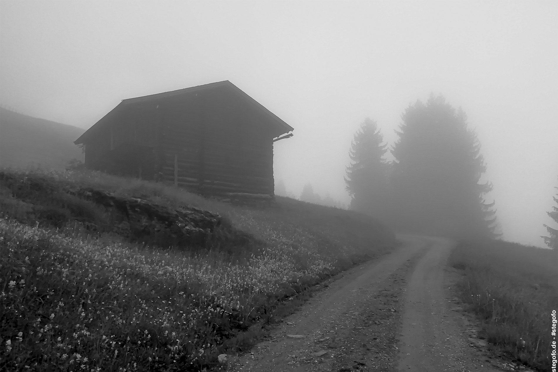 Der Nebel in den Bergen