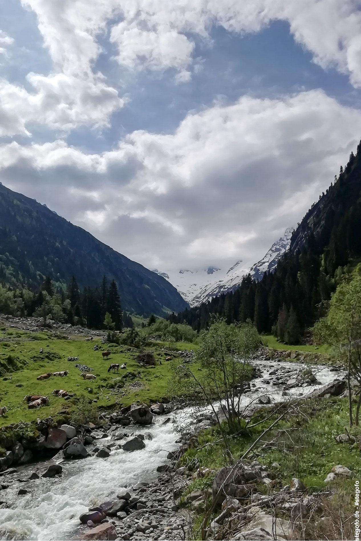 Der kleine Bach durch das Tal